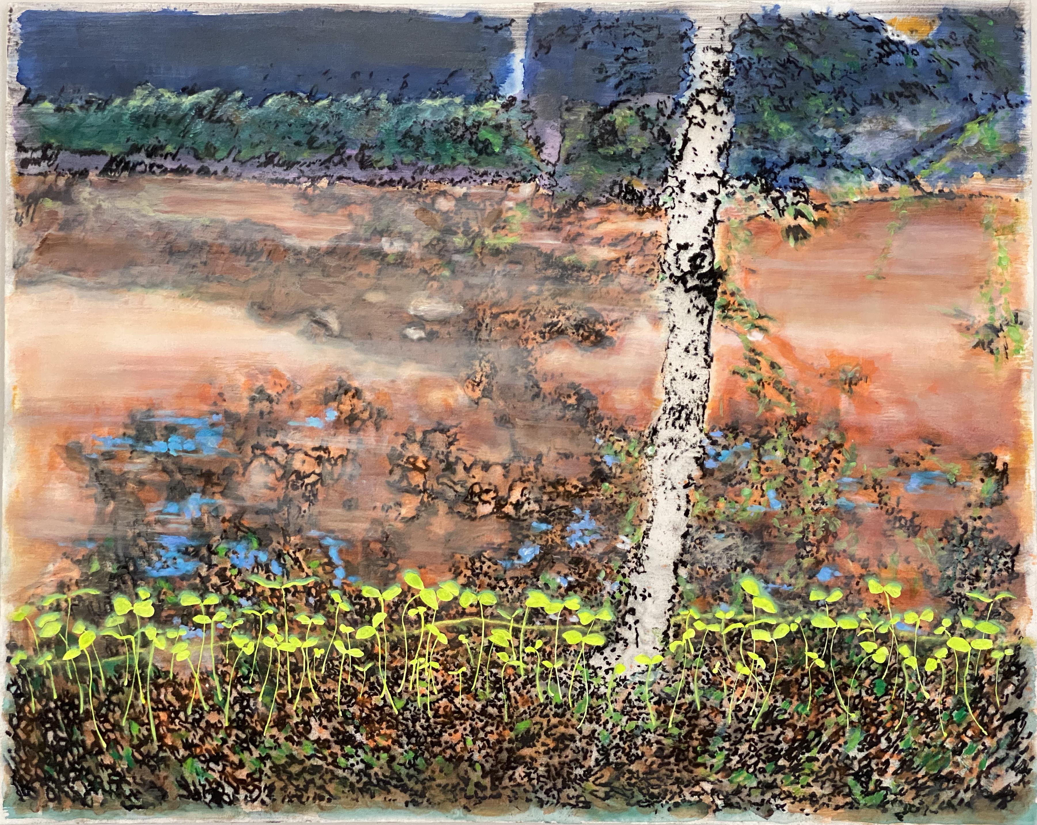 muddy creek
